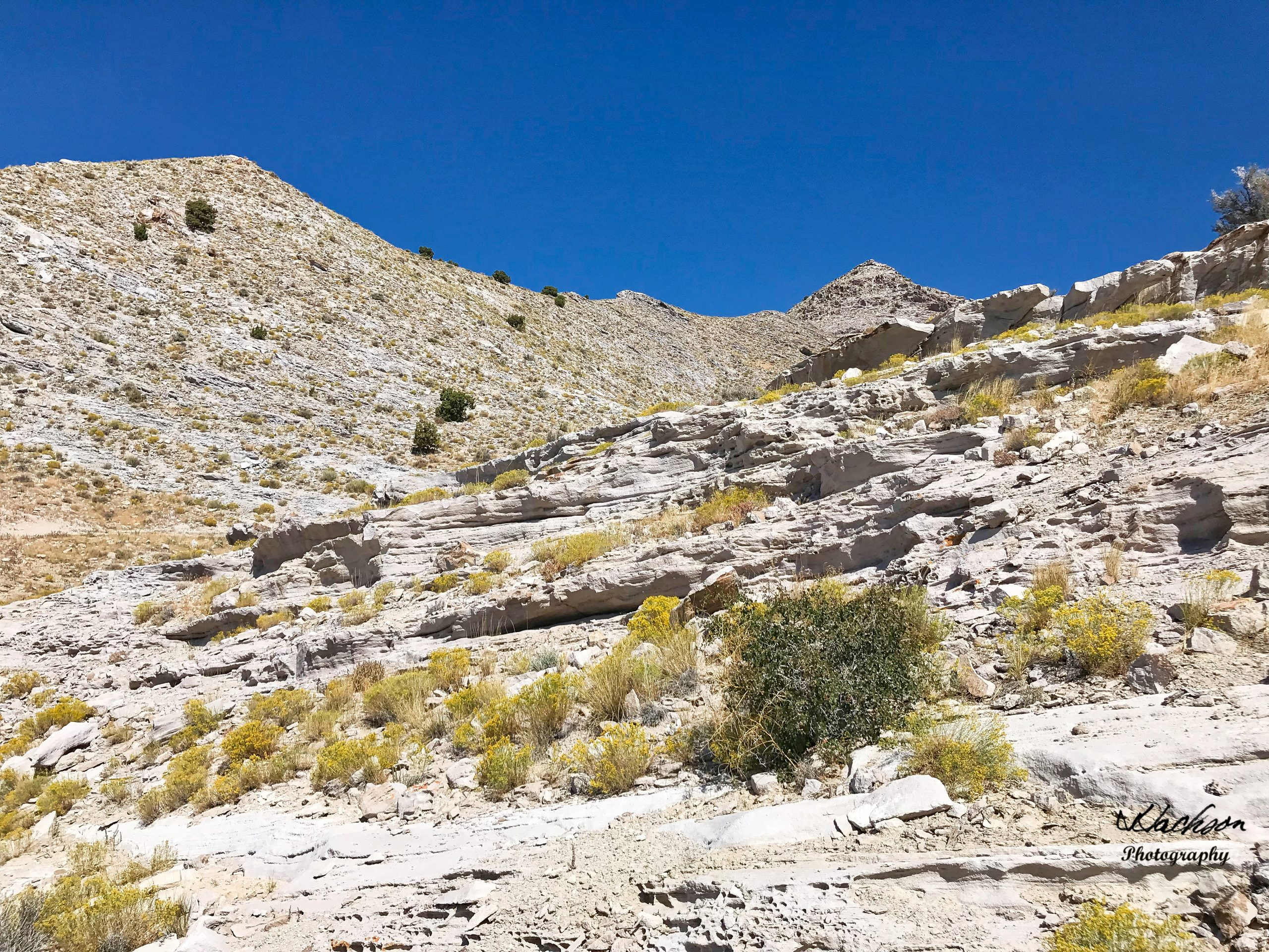 Photo of Topaz Mountains Utah